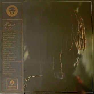 Thundercat - It Is What It Is - LP Lim.