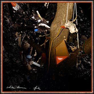 White Denim - Fits - CD