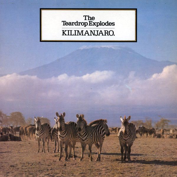 The Teardrop Explodes - Kilimanjaro - LP