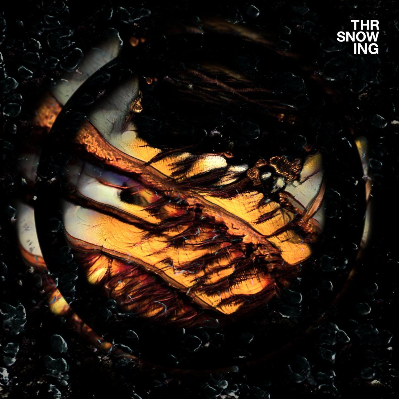Throwing Snow - Dragons - LP