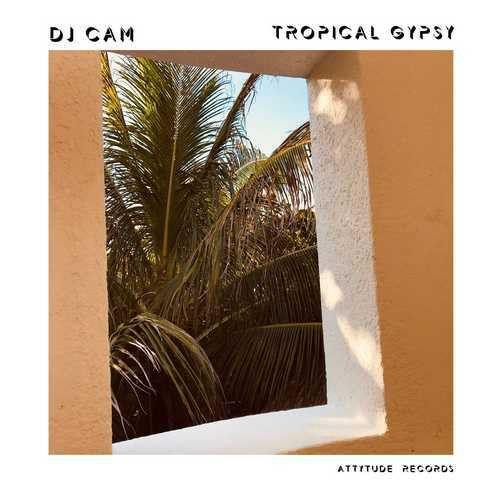DJ Cam - Tropical Gypsy - LP